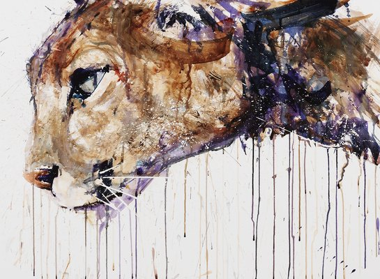 cougar-giclee-with-varnish.jpg
