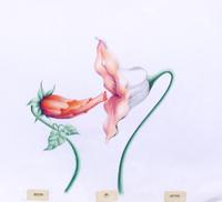 Art loft animation art cels pink floyd the wall flowers wallflowers2001g the flowers in sensual embrace mightylinksfo